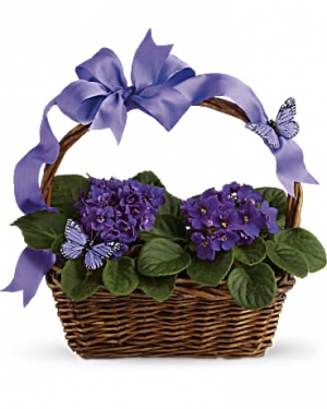 Violets and Butterflies Basket Arrangement in Pittsboro, NC | Blossom Floral Artistry