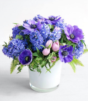 Violets are Blue Spring Collection  in Oakville, ON | ANN'S FLOWER BOUTIQUE-Wedding & Event Florist