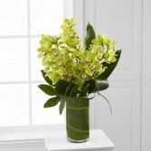 Vision - Luxury Orchid Bouquet