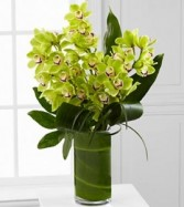 Vision Luxury Orchid Bouquet Lavish Luxury Collection