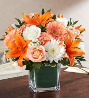 VOLS Orange cube in Crossville, TN | Poppies Florist