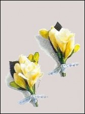 Freesia Buttonhole Wedding Boutonnieres