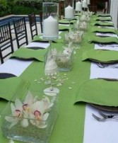 Exotic Cymbidium Orchids Table Wedding Reception Arrangements