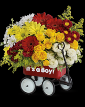Wagon Wow Baby Boy / Girl