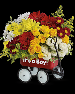 Wagon Wow Baby Boy / Girl in White Oak, PA | Breitinger's Flowers & Gifts