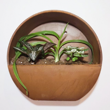 Wall Hanging Planter Tropical Dish Garden