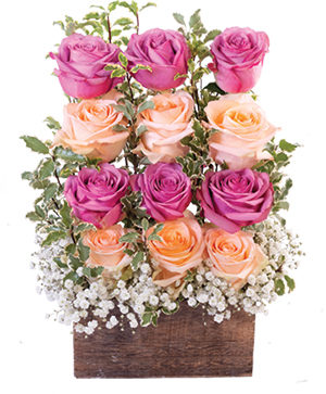 Wall of Roses Floral Design in Storrs, CT | THE FLOWER POT