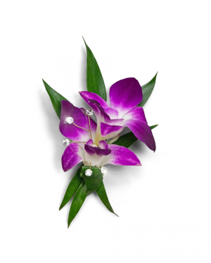 Wanderlust Boutonniere Corsage/Boutonniere in Nevada, IA | Flower Bed