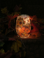 Warm Autumn Light Gift