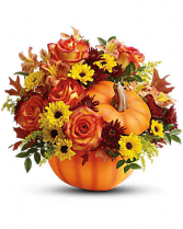 Warm Fall Wishes everyday