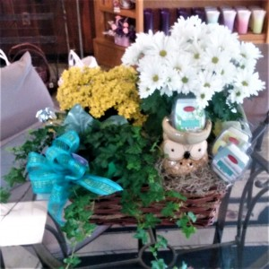 Warm Her Heart Basket Blooming Plants & Candle Warmer in Dayton, OH   ED SMITH FLOWERS & GIFTS INC.
