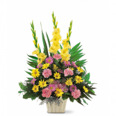 Warm Thoughts         TF 184-3 Funeral Arrangement