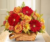 Warm Welcome Basket Arrangement