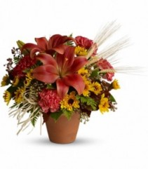 Warm Welcome Fall Arrangement
