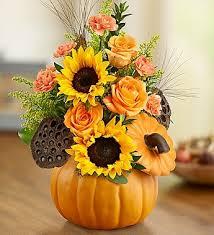 Warm Wishes Pumpkin in Lexington, NC | RAE'S NORTH POINT FLORIST INC.