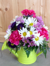Watering Can Arrangement Assorted Colors (flowers and cans)