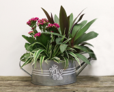 Watering Can Planter Basket
