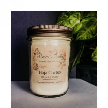 Baja Cactus Soy Candle  Waveland Candle Company