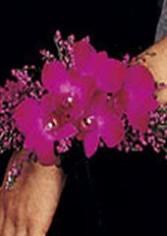 DENDROBIUM ORCHIDS Wristlet Corsage