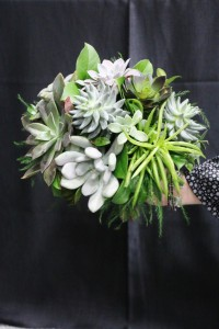 Wedding Bouquet - Succulents