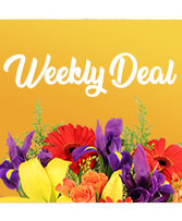 Weekly Deal Custom Arrangement