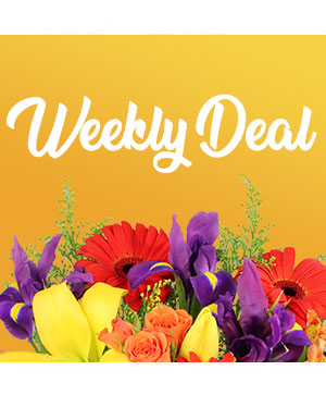 Weekly Deal Custom Arrangement in Ventura, CA | Mom And Pop Flower Shop