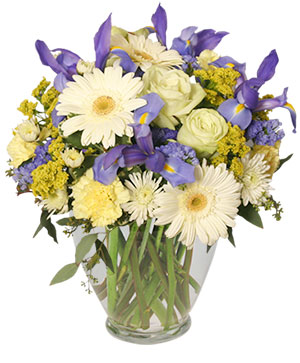 Welcome Baby Boy Flower Arrangement in Springtown, TX | Springtown Flower Shop