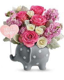 Welcome Baby Girl Elephant  Baby