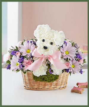 Welcome Baby Girl Love Pup in Arlington, TX | Lige Green Flowers