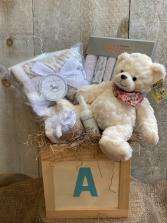 Welcome Baby Premium Gift Basket