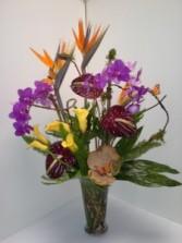 Welcome Bouquet Tropical arrangement