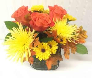 Welcome Fall   in Easton, MD | ROBINS NEST FLORAL AND GARDEN CENTER