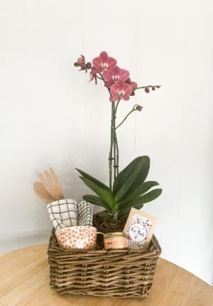 House Warming Gift Basket  in Raleigh, NC | Daniel's Florist