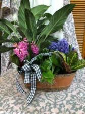 Wexford planter