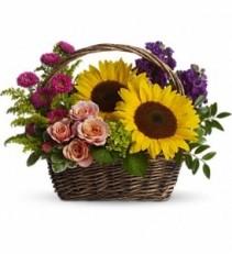 WF137 Sunny Sun Flowers Basket
