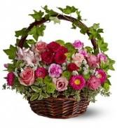 WF150 Pink Ivy Basket