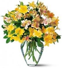 WF101    Alstroemeria Bouquet