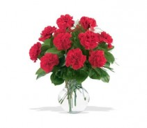 WF161 Red Carnations Bouquet
