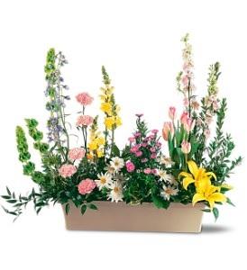 WF214 Garden Flowers