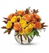 WF235 Orange & Yellow Roses