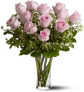 WF244 12 Light Pink Roses
