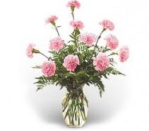 WF245 12 Light Pink Carnations