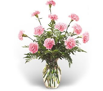 WF245 12 Light Pink Carnations