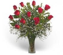 WF246 Classic Dozen Red Roses