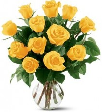 WF248 12 Yellow Roses
