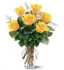WF252 6 Yellow Roses