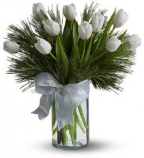 WF308 White Tulips