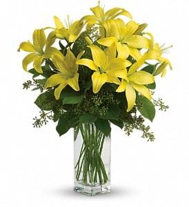 WF321 Yellow Lilies