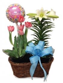 WFE 101  Happy Easter Basket