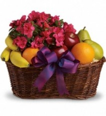 WFG107 Fruit & Flower Plant Basket